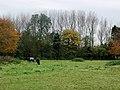 Totley's Farm, Burstwick - geograph.org.uk - 279004.jpg