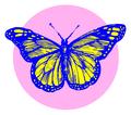 Transgender-butterfly.png