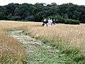 Trent Country Park - geograph.org.uk - 50110.jpg