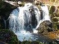 Triberger Wasserfälle 2018-04-17 (1).jpg