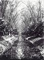 Tropenmuseum Royal Tropical Institute Objectnumber 60038516 Brug over een vaartrens op plantage S.jpg