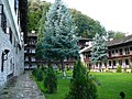 Troyan Monastery E3.jpg