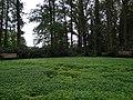 Tuinen van Mien Ruis - Dedemsvaart - 6326825435.jpg