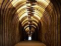 Tunnel leading to Zangu gorge.jpg