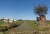 Tussen Ameide en Meerkerk, sloot in polderlandschap foto5 2016-10-05 14.50.jpg