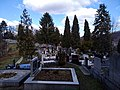 Tuzla - Trnovac Groblje 9 (2019).jpg