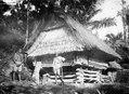 Typisk hydda av flätad bambu belägen nedanför pasanggrahan. Förstoring av bildark, 10776. Palue - SMVK - 000603.tif