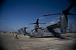 U.S. Air Force CV-22 Osprey tiltrotor aircraft are shown before departing from Hurlburt Field, Fla., Oct. 3, 2013 131003-F-RS318-238.jpg