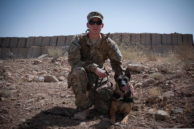 File:U.S. Army Spc. Christopher Lightner, a military dog handler ...