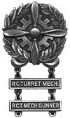 USAAF - Badge technique BW.jpg