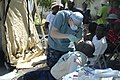 US Navy 100128-N-7172K-197 Lt. Jason Herres, a U.S. Navy dentist assigned to the amphibious transport dock ship USS Mesa Verde (LPD 19), extracts a tooth from a Haitian patient during a medical support mission in Ile de la Gona.jpg