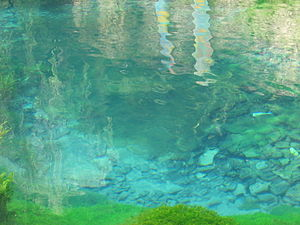 Schelklingen - Spring of the small river Urspring