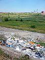 Văcărești Nature Park - trash.jpg