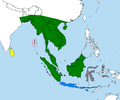 Varanus salvator.PNG