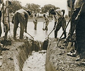 A black and white photograph of people filling in a ditch with standing water