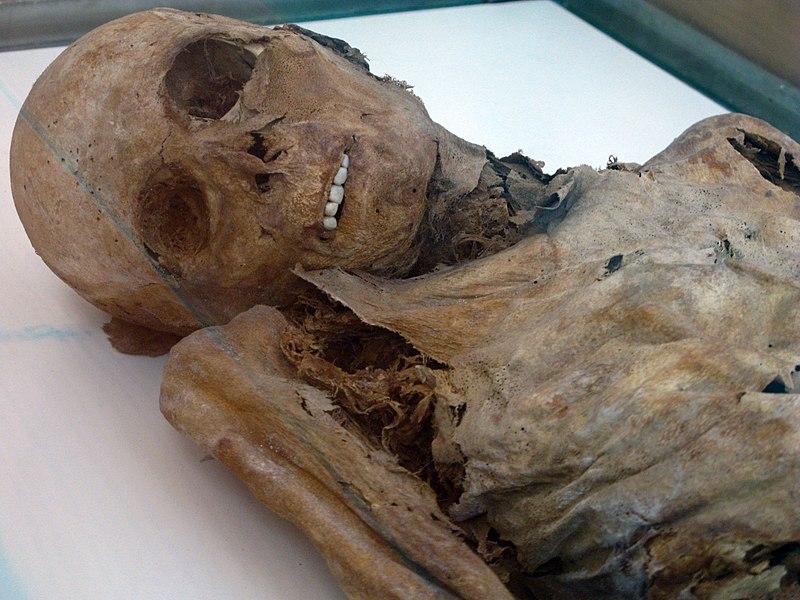 File:Venzone Dom Friedhofskapelle Mumie 02.JPG