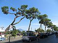 Via Cesario Console - panoramio (1).jpg