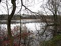 View East along Rancocas Creek from shoreline south of Bridge St., Rancocas, NJ November 26, 2009 - panoramio.jpg
