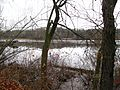 View across Rancocas Creek from south shoreline south of Bridge St., Rancocas, NJ November 26, 2009 - panoramio.jpg