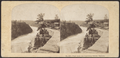 View from the Suspension Bridge, Niagara, from Robert N. Dennis collection of stereoscopic views.png