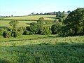 View near Holsome, Diptford - geograph.org.uk - 187423.jpg