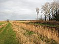 View north along footpath - geograph.org.uk - 1103002.jpg