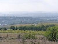 View of Kesztölc vineyards and Kesztölc.JPG