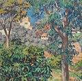 Villas vues à travers les eucalyptus, La Mortola.JPG