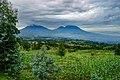 Volcanoes National Park Rwanda.jpg