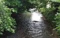 Vue de la rivière Loison-sur-Créquoise à Hesmond aout 2017 07.jpg