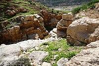 Wadi-Makukh-556.jpg