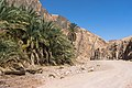 Wadi Gnai 2020-03-08-5.jpg