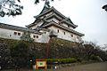 Wakayama Castle - panoramio - jetsun (91).jpg