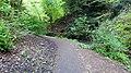Wallace Spa Well, Pittencrieff Glen, Dunfermline, Scotland.jpg