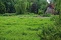 Watercress beds, Alresford - geograph.org.uk - 1763698.jpg