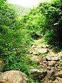 Way to SRI VALUKKUPARAI MUNIAPPAN TEMPLE and SRI JALAMKANDA MUNIAPPAN TEMPLE, Yercaud foot hill, Salem - panoramio (1).jpg