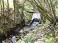 Weir on the Old Mill Burn - geograph.org.uk - 406457.jpg