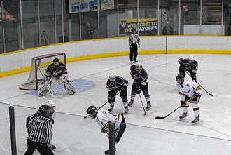 College ice hockey - Windsor Lancers and Western Mustangs during 2013 CIS (now U Sports) playoffs.