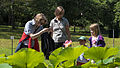 Wien 03 Botanischer Garten 05.jpg