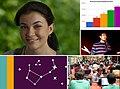 Wikimedia Highlights Lead Frame may 2015.jpg