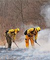 Wildland Fire incident New Jersey Forest Fire Service 19APR2009.jpg