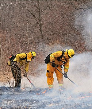 New Jersey Forest Fire Service - A fireline handcrew suppressing a fire in northern New Jersey