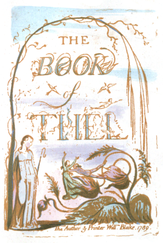 critical essays on william blake S foster damon in william blake: his philosophy and symbols: to  by critics  to make the songs of innocence ironic, to suggest that blake.