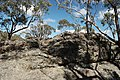 Wog Wog to Corang Peak, Corang Arch and Canowrie Brook, Morton National Park 27.jpg