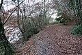 Woodland path - geograph.org.uk - 1065198.jpg