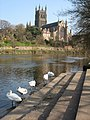 Worcester Cathedral - geograph.org.uk - 1301952.jpg