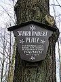 Wuppertal Barmer Wald 0011.jpg