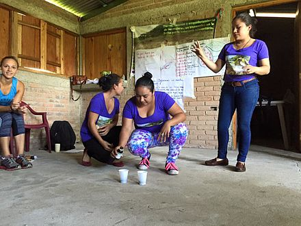 Three young Nicaraguan women demonstrate to visiting US buyers and consumers the use of organic soil testing methods. Young women soil testing.jpg
