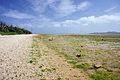 Yubu Island Okinawa Pref Japan11bs4500.jpg