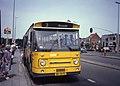 ZWN bus in Knokke 1983.jpg
